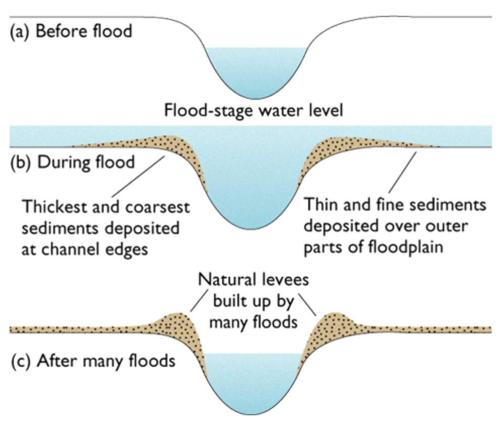 Main ways in which a river erodes (Geography coursework, please help)?